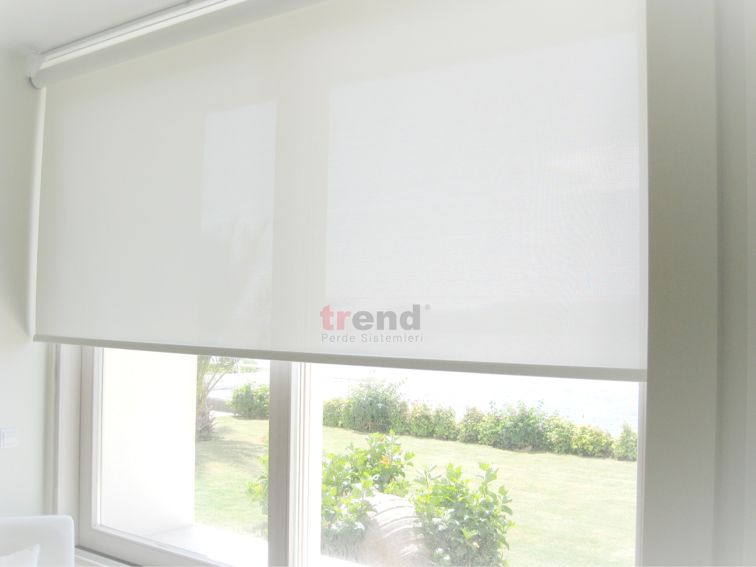 Sun Screen Roller Blinds As Low As 9 95 M 178 Trend 174